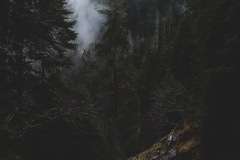 """""""Каньонът на водопадите. Родопите"""""""