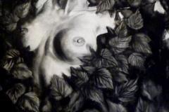 """""""Сексуална илюзия"""", въглен върху хартия, 100/70 см."""
