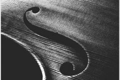 """""""Цигулка"""""""